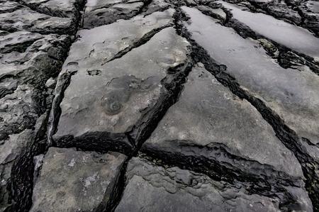 burren: Coastal limestone rock formations, The Burren Region, Clare County, Ireland
