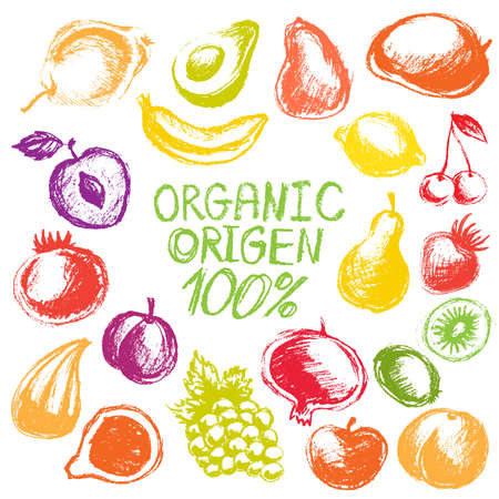Hand drawn colorful fruits isolated, vector fresh organic chalk fruits set on white background