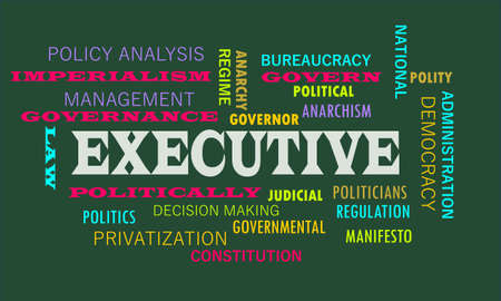 Executive a meaningful word art presented on vocab text cloud which relate with government factors. Ilustrace