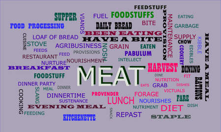 Meat word displayed for food related fact of human body on text clouds illustration educational background.