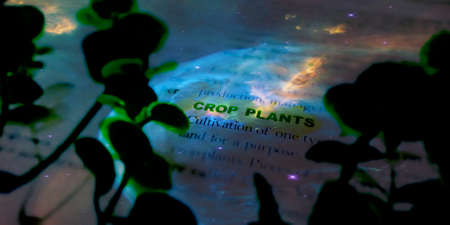 Crop plants word highlighted with closeup view on book word educational related terminology presented for students awareness.