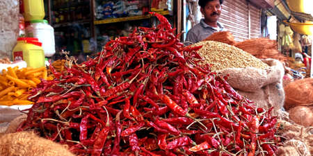 DISTRICT KATNI, INDIA - AUGUST 14, 2019: Fresh red dry chillies at indian agriculture produce market. Editöryel