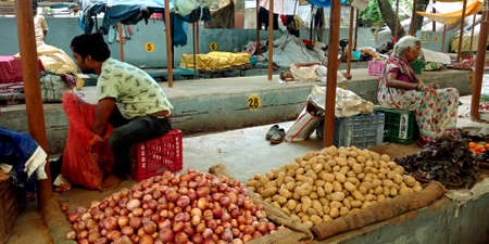 DISTRICT KATNI, INDIA - AUGUST 14, 2019: Asian village farmer selling Onion and potato at indian vegetable green fresh agriculture produce market.