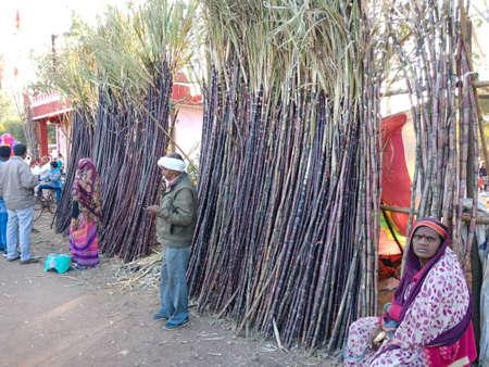 DISTRICT KATNI, INDIA - FEBRUARY 02, 2020: Indian people selling Sugarcane on road during village bazaar festival season fest event.