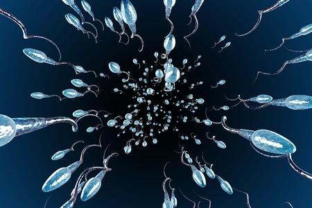 Sperm Racing