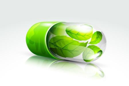 plantas medicinales: Cápsula Orgánica