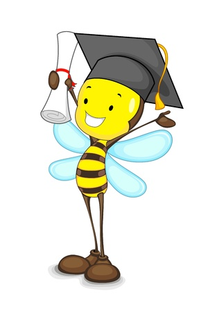 Graduate Bee Illustration
