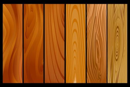 furnier: Wood Texture
