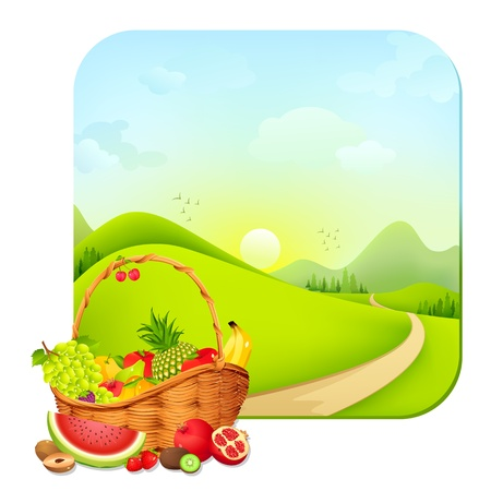 Nature s Basket Stock Vector - 18020479