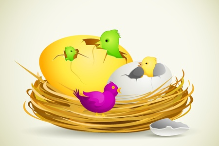animal nest: Chick in Egg Shell Illustration
