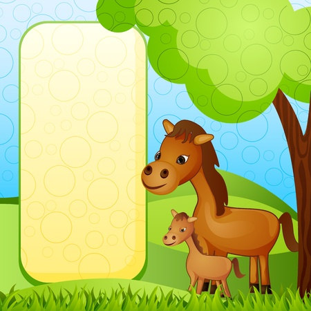 baby ass: Mother and baby Horse