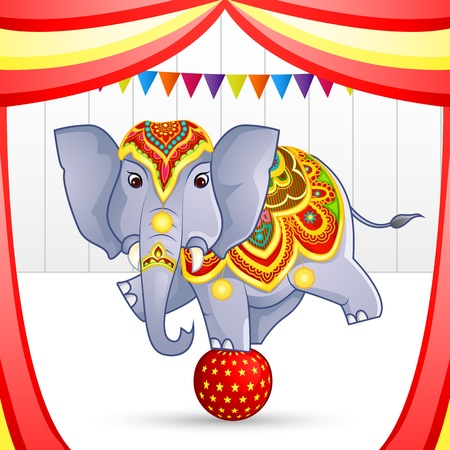 Elephant in Circus photo