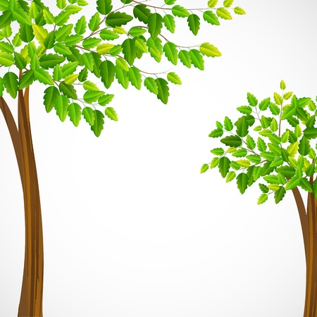 Green Tree Stock Vector - 19658925