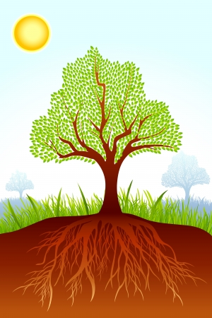 Tree with Sand Stock Vector - 19658930