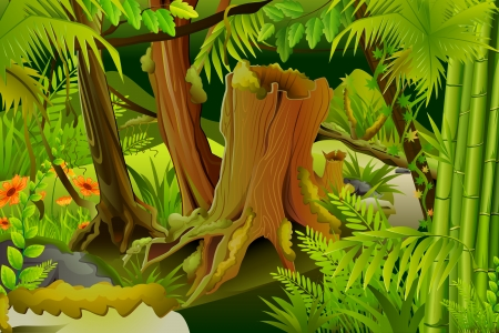 mystical forest: Mystic Jungle