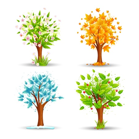 Season Tree Stock Vector - 19659000