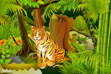 sanctuary: vector illustration of tiger in jungle Stock Photo