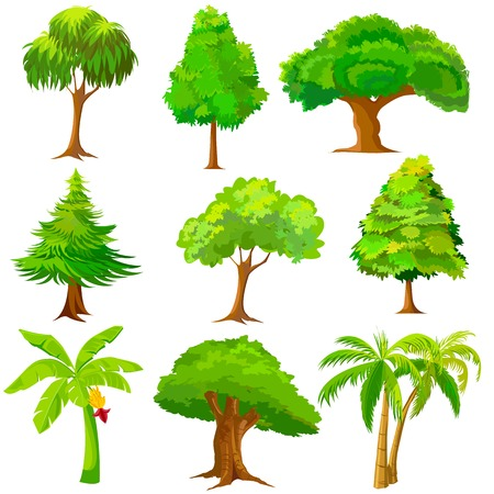 arboles frondosos: ilustración vectorial de la colección de árboles