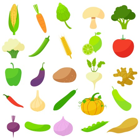 vector illustration of collection of vegetables Vector