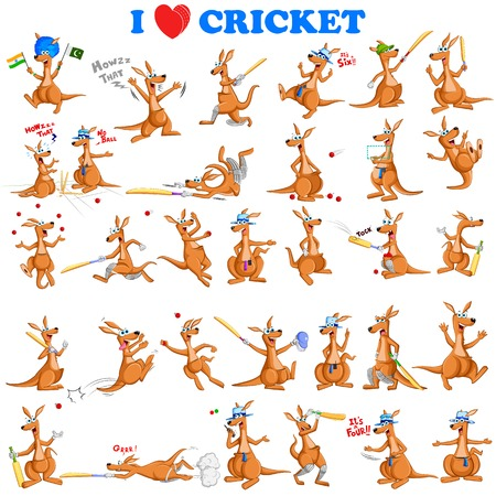 kangaroo: vector illustration of kangaroo playing cricket