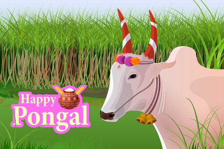 harvesting: vector illustration of Happy Pongal celebration background