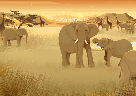 ilustración vectorial de los animales salvajes en la selva de África