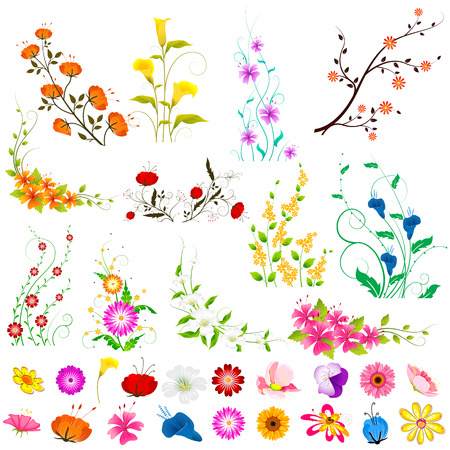 gerber daisy: vector illustration of collection of colorful flowers