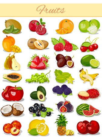 rasberry: vector illustration of Fruit Product Food Collection Illustration