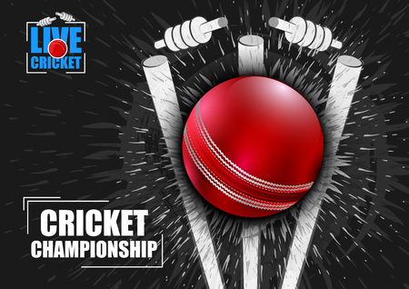 Vector illustration of Sports background for the match of Cricket Championship Tournament