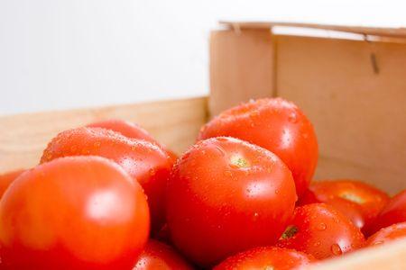 tomatos: Fresh tomatos