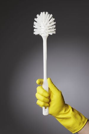 A gloved hand holding a clean toilet brush Stock Photo - 4766789