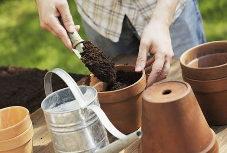 Hands putting soil in clay pot with a small shovel Stock Photo - 5091284