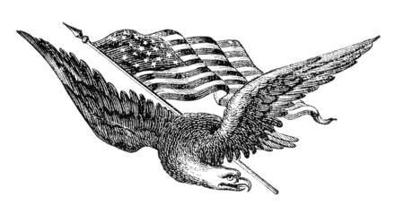 eagle: Eagle and American flag. Illustration originally published in Ernst von Hesse-Warteggs Nord Amerika, swedish edition published in 1880. The image is currently in Public domain by virtue of age. Stock Photo