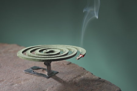 mosquito: Mosquito coil is mosquito-repelling incense, usually shaped into a spiral, and typically made from a dried paste of pyrethrum  powder.