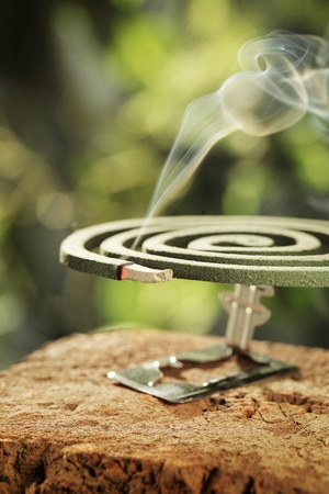 Insect repellent mosquito coil in closeup. Stock Photo - 12247681