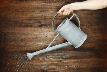 watering can: Pouring water with a metallic watering can.