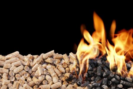 biomasa: Quemar pellets de madera. Pellets de madera son un tipo de combustible de madera.