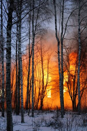 A wooden house burning in a winter forest. Stock Photo - 15022935