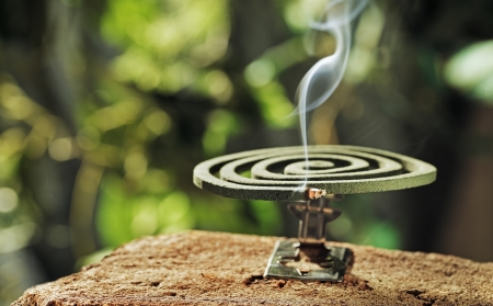 Green spiral insect repellent mosquito coil incense smoking. Stock Photo