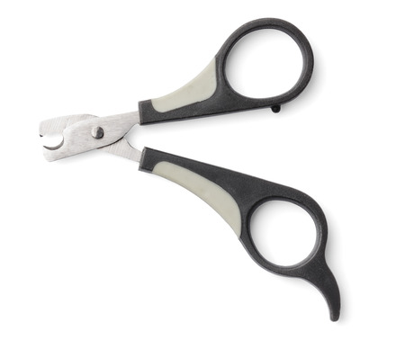 nail clippers: Small nail clippers used for trimming the nails of a cat or a small dog.