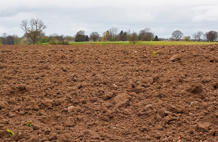 A freshly dug and recently seeded agricultural field, good background for farming Stock Photo - 13197318