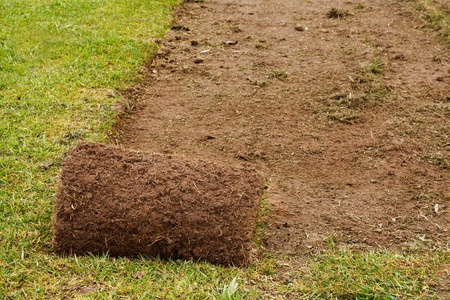 A roll of freshly cut turf used to make the perfect lawn Stock Photo - 13452733
