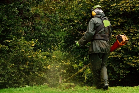 An agricultural worker trimming the brush with a petrol strimmer