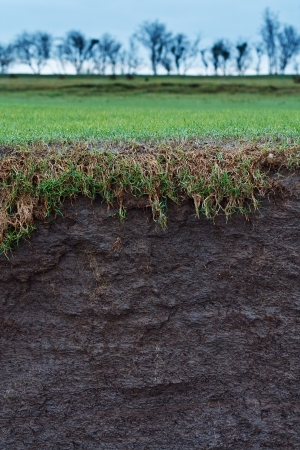 cross section of a grass field with exposed soil following erosion or landslide photo