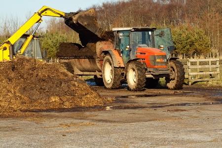 muck: agricultural scene of farmer loading his commercial muck spreader with manure before fertilising his field Stock Photo