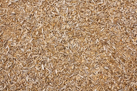 wood chip: woodchip background great concept for a sawmill or carpenter could also be a playground safety floor