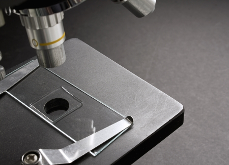 slide glass: Scientific Glass slide mounted on a real microscope used in scientific research to magnify and inspect bacteria and cell structure Stock Photo