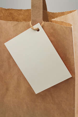 unbranded: Brown paper bag with blank tag attached for your personal message or company branding Stock Photo