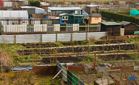 Gardeners allotment plots ready for cultivation of gardners homegrown vegetables and flowers photo