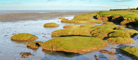 sandbank: Typical panoramic Scenic view of the landscape of the Solway firth a tidal estuary for the river Eden located in Cumbria on the Scottish Border and an Area of Outstanding Natural Beauty. Stock Photo